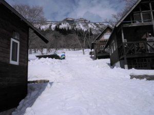 エルムの雪景色
